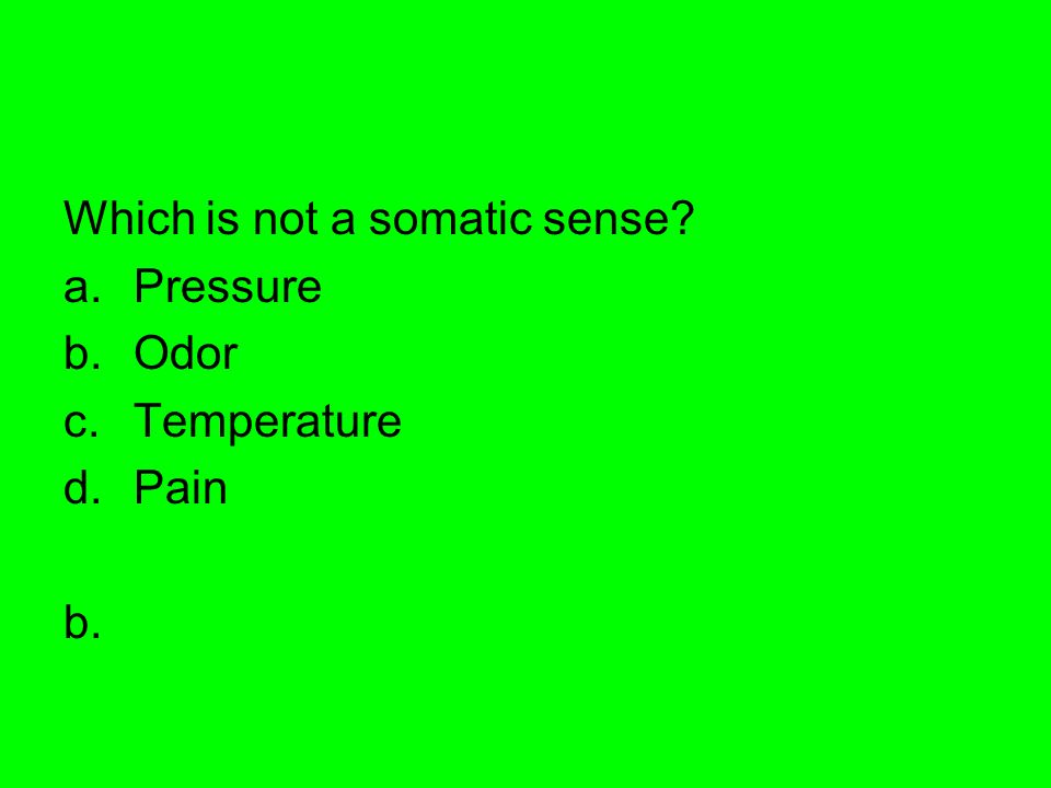 Which is not a somatic sense? a.Pressure b.Odor c.Temperature d.Pain b.
