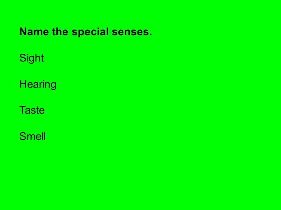 Name the special senses. Sight Hearing Taste Smell