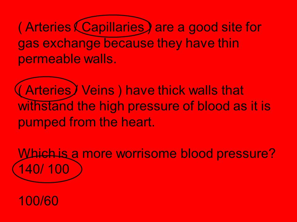 ( Arteries / Capillaries ) are a good site for gas exchange because they have thin permeable walls. ( Arteries / Veins ) have thick walls that withsta