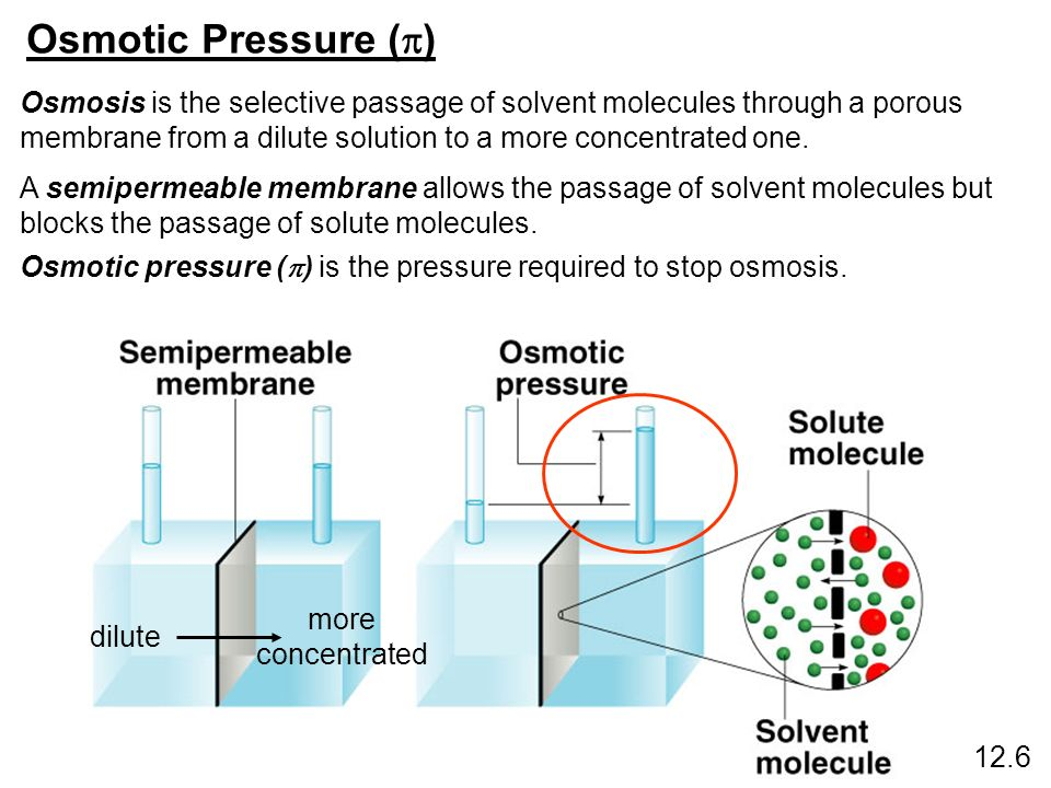 Osmotic Pressure ( ) 12.6 Osmosis is the selective passage of solvent molecules through a porous membrane from a dilute solution to a more concentrate