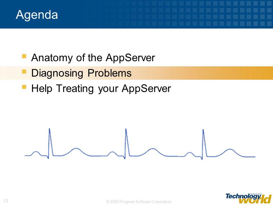 © 2008 Progress Software Corporation 13 Agenda Anatomy of the AppServer Diagnosing Problems Help Treating your AppServer