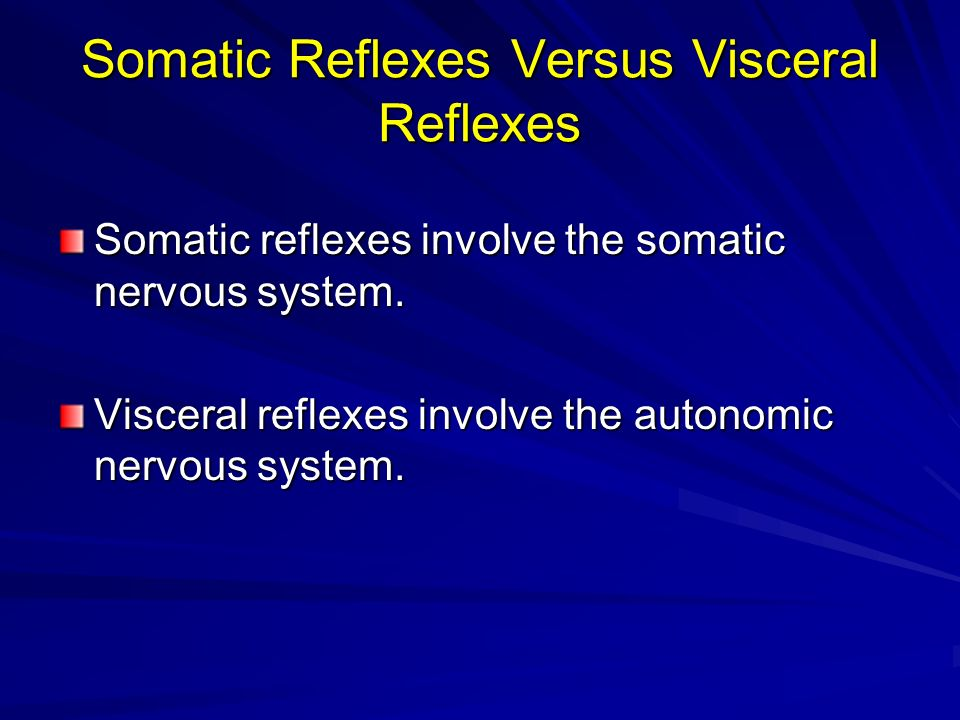 Somatic Reflexes Versus Visceral Reflexes Somatic reflexes involve the somatic nervous system. Visceral reflexes involve the autonomic nervous system.