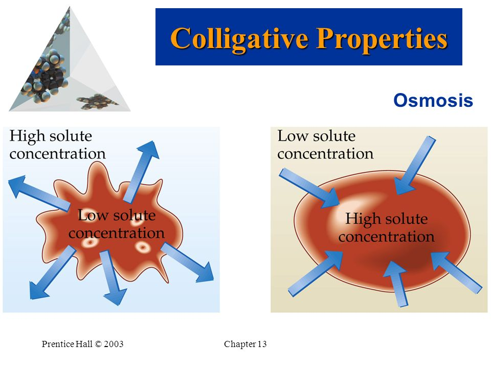 Prentice Hall © 2003Chapter 13 Osmosis Colligative Properties
