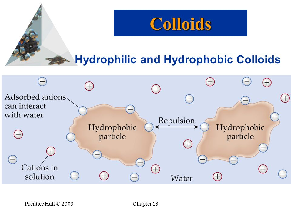 Prentice Hall © 2003Chapter 13 Hydrophilic and Hydrophobic Colloids Colloids
