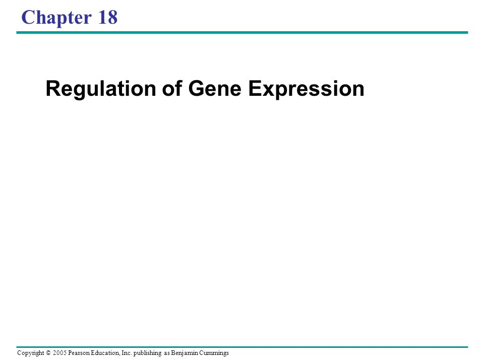 Copyright © 2005 Pearson Education, Inc. publishing as Benjamin Cummings Chapter 18 Regulation of Gene Expression