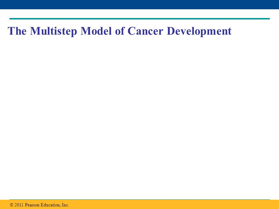 Copyright © 2005 Pearson Education, Inc. publishing as Benjamin Cummings The Multistep Model of Cancer Development © 2011 Pearson Education, Inc.