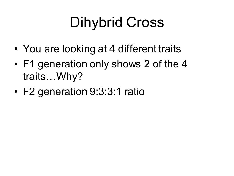 Dihybrid Cross You are looking at 4 different traits F1 generation only shows 2 of the 4 traits…Why? F2 generation 9:3:3:1 ratio