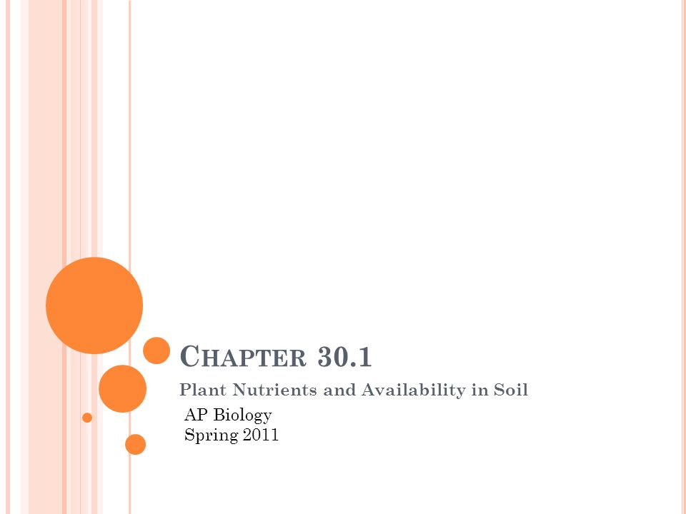 C HAPTER 30.1 Plant Nutrients and Availability in Soil AP Biology Spring 2011