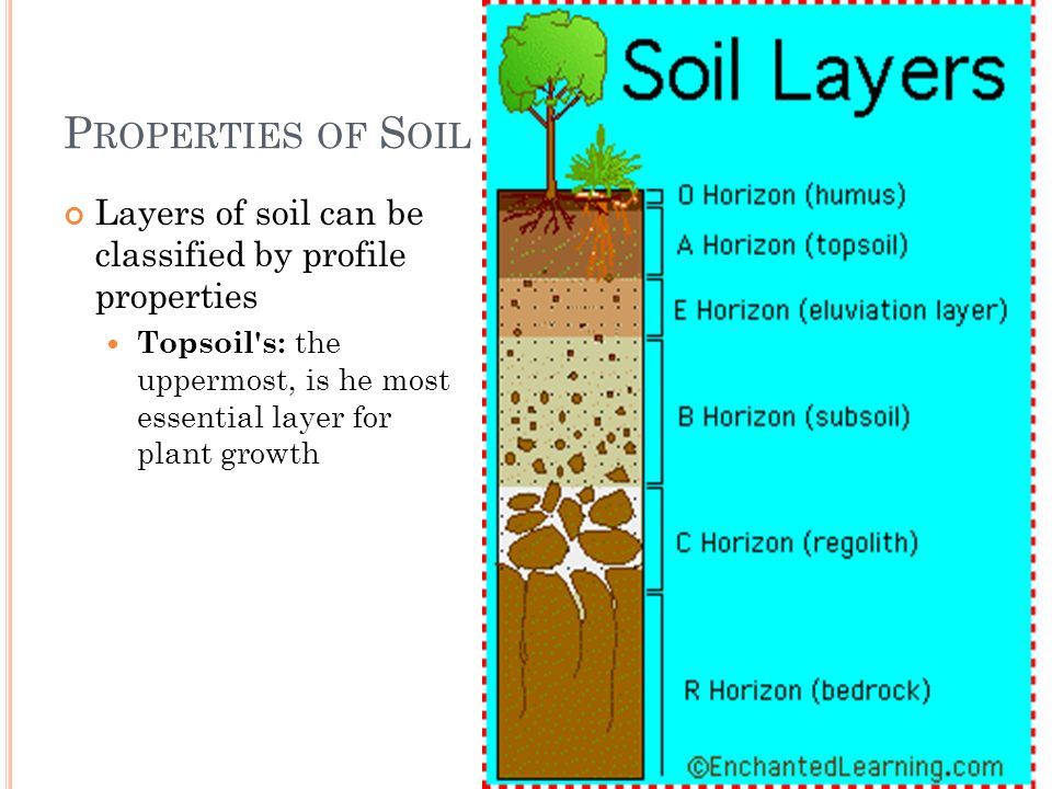 P ROPERTIES OF S OIL Layers of soil can be classified by profile properties Topsoil's: the uppermost, is he most essential layer for plant growth
