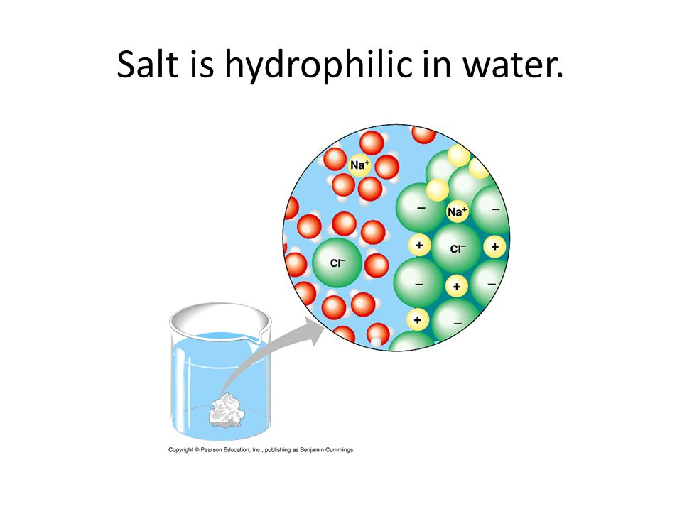 Salt is hydrophilic in water.