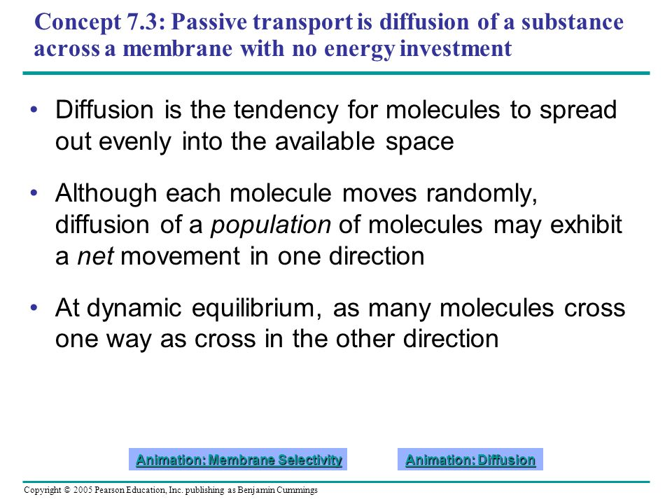 Copyright © 2005 Pearson Education, Inc. publishing as Benjamin Cummings Concept 7.3: Passive transport is diffusion of a substance across a membrane