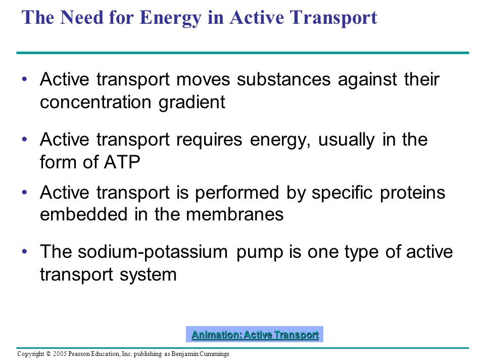 Copyright © 2005 Pearson Education, Inc. publishing as Benjamin Cummings The Need for Energy in Active Transport Active transport moves substances aga