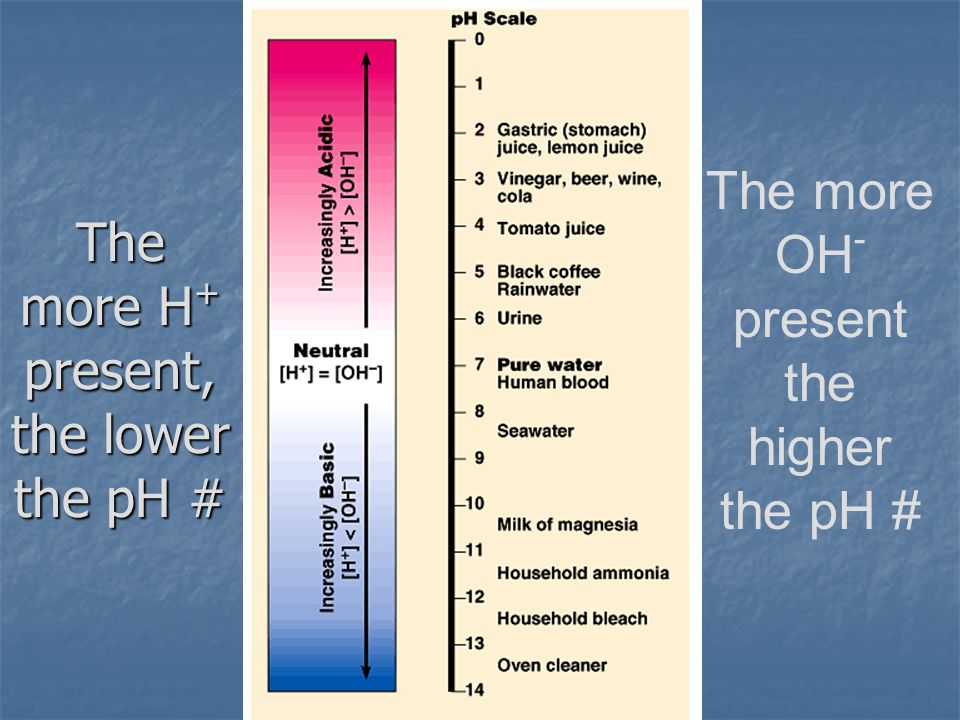 The more H + present, the lower the pH # The more OH - present the higher the pH #
