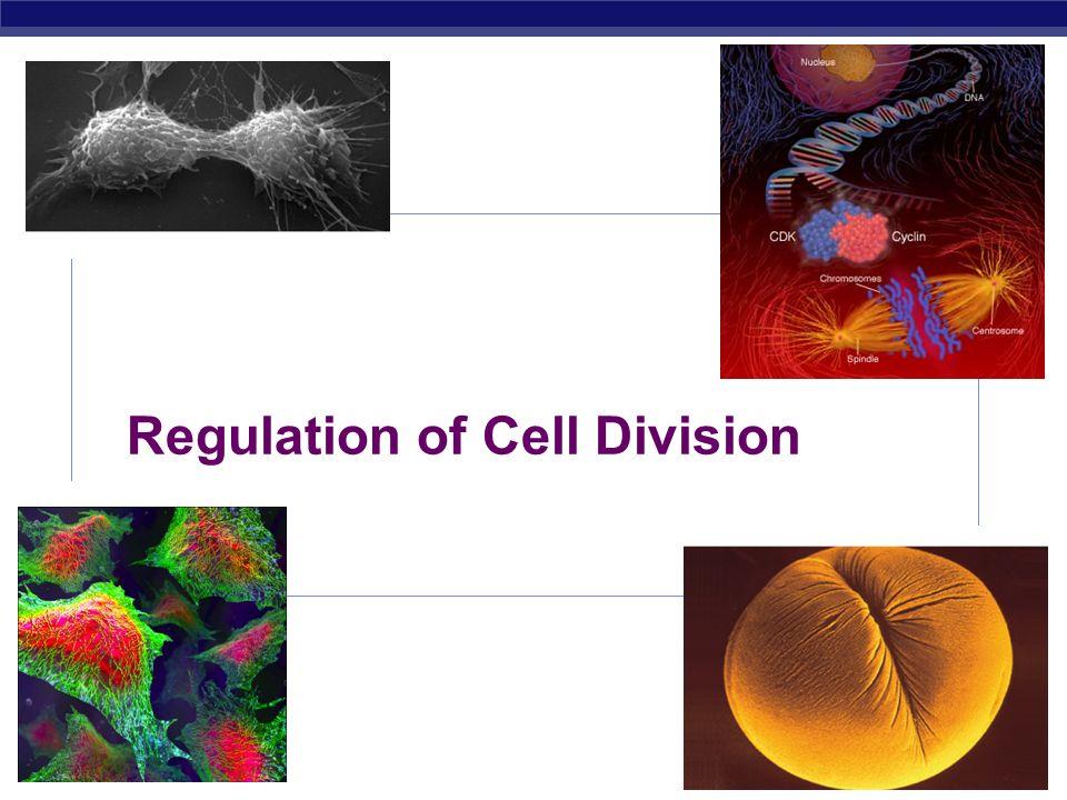 AP Biology Fig.