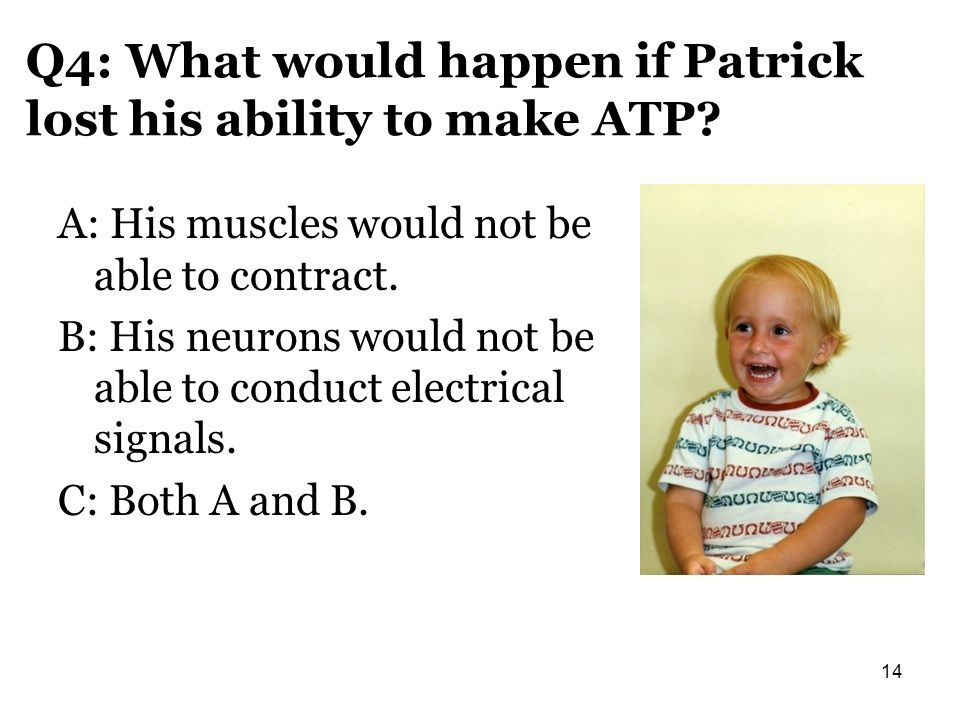 Q4: What would happen if Patrick lost his ability to make ATP? A: His muscles would not be able to contract. B: His neurons would not be able to condu