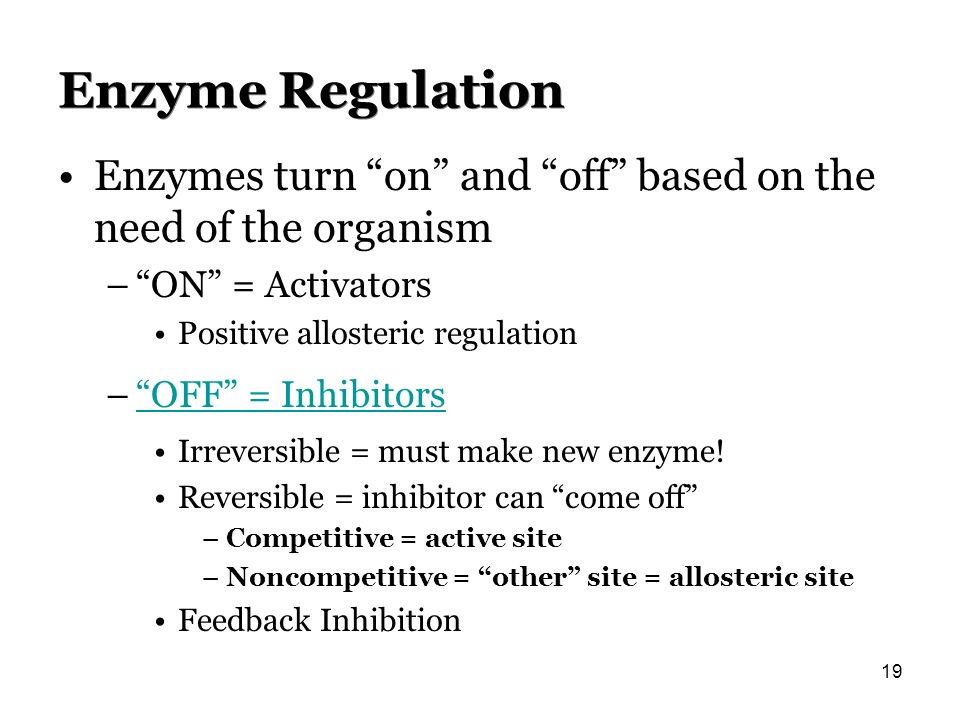 Enzyme Regulation Enzymes turn on and off based on the need of the organism –ON = Activators Positive allosteric regulation –OFF = InhibitorsOFF = Inh