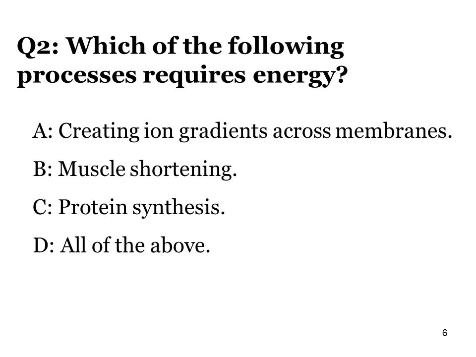 Q2: Which of the following processes requires energy? A: Creating ion gradients across membranes. B: Muscle shortening. C: Protein synthesis. D: All o