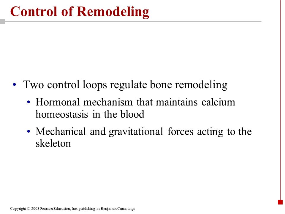 Copyright © 2003 Pearson Education, Inc. publishing as Benjamin Cummings Control of Remodeling Two control loops regulate bone remodeling Hormonal mec