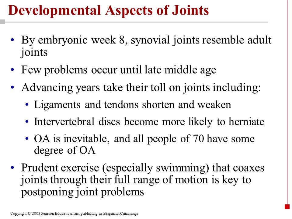 Copyright © 2003 Pearson Education, Inc. publishing as Benjamin Cummings Developmental Aspects of Joints By embryonic week 8, synovial joints resemble