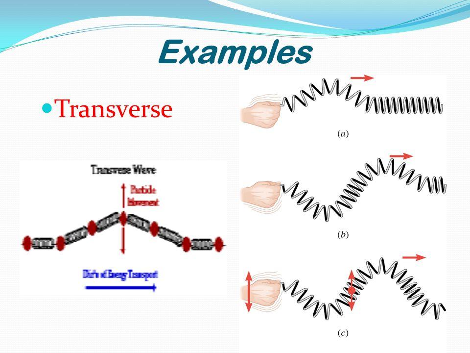 Examples Transverse