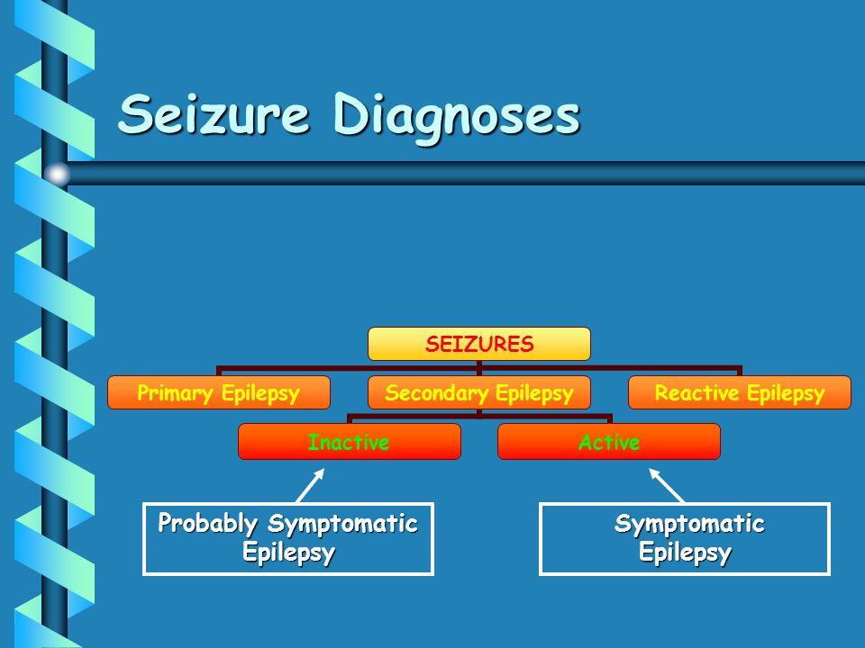 Seizure Diagnoses Probably Symptomatic Epilepsy Symptomatic Epilepsy Symptomatic Epilepsy