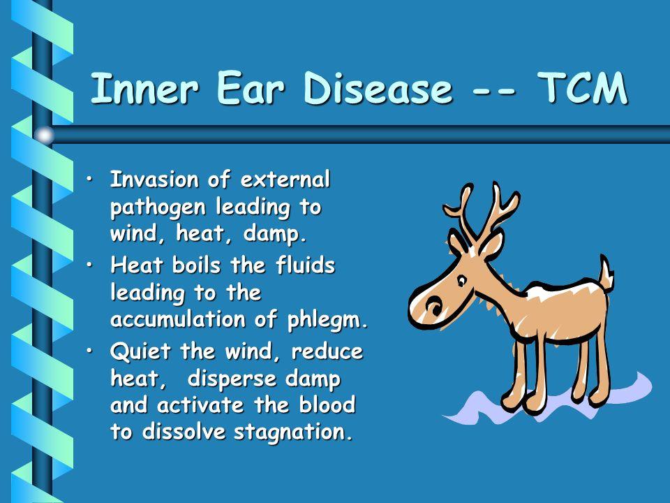 Inner Ear Disease -- TCM Invasion of external pathogen leading to wind, heat, damp.Invasion of external pathogen leading to wind, heat, damp.