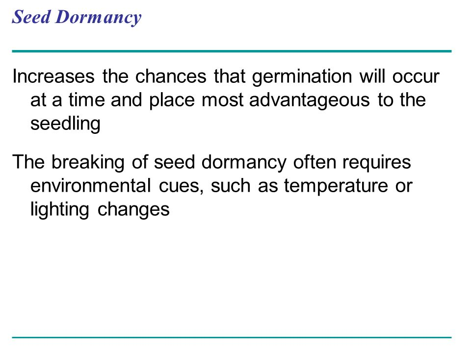Seed Dormancy Increases the chances that germination will occur at a time and place most advantageous to the seedling The breaking of seed dormancy of