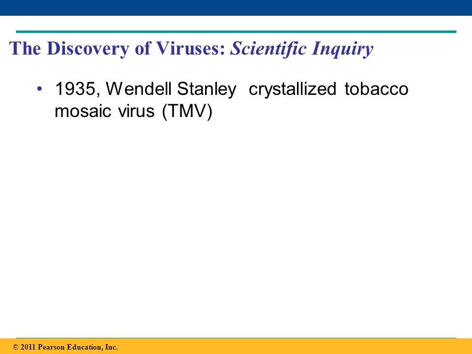 Copyright © 2005 Pearson Education, Inc. publishing as Benjamin Cummings The Discovery of Viruses: Scientific Inquiry 1935, Wendell Stanley crystalliz
