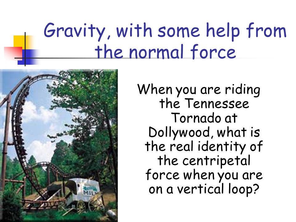 Gravity, with some help from the normal force When you are riding the Tennessee Tornado at Dollywood, what is the real identity of the centripetal force when you are on a vertical loop?