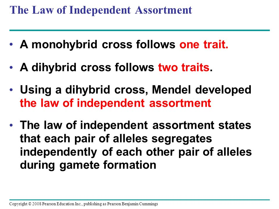 The Law of Independent Assortment A monohybrid cross follows one trait. A dihybrid cross follows two traits. Using a dihybrid cross, Mendel developed