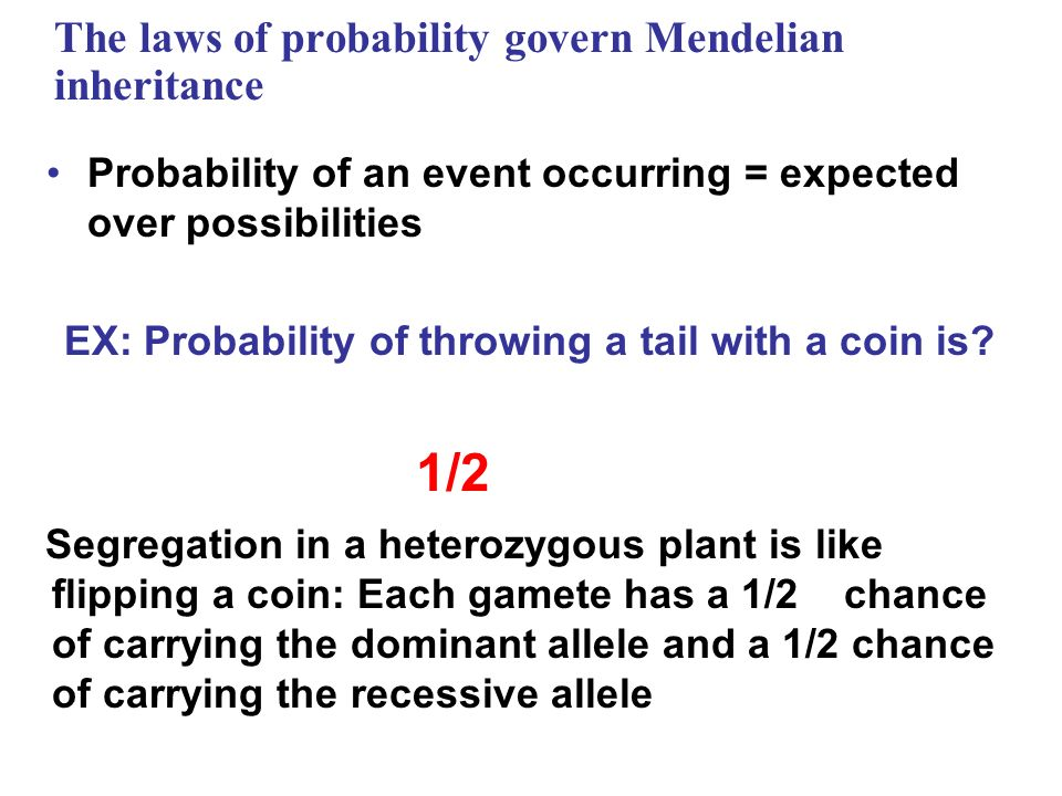 The laws of probability govern Mendelian inheritance Probability of an event occurring = expected over possibilities EX: Probability of throwing a tai