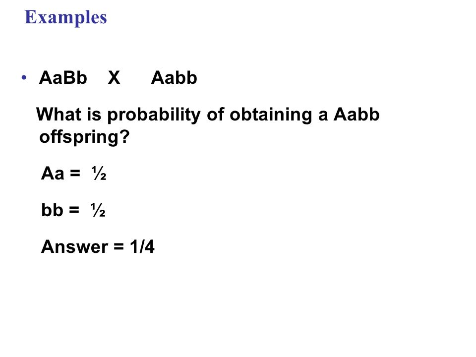 Examples AaBb X Aabb What is probability of obtaining a Aabb offspring? Aa = ½ bb = ½ Answer = 1/4
