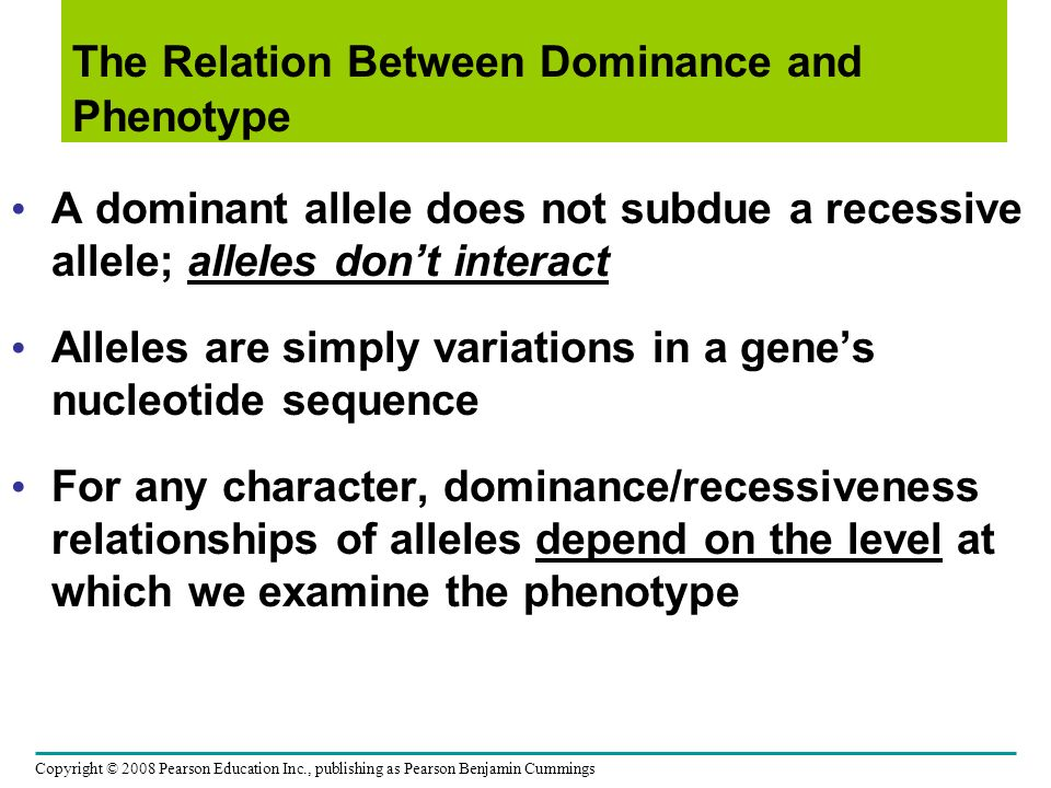 A dominant allele does not subdue a recessive allele; alleles dont interact Alleles are simply variations in a genes nucleotide sequence For any chara
