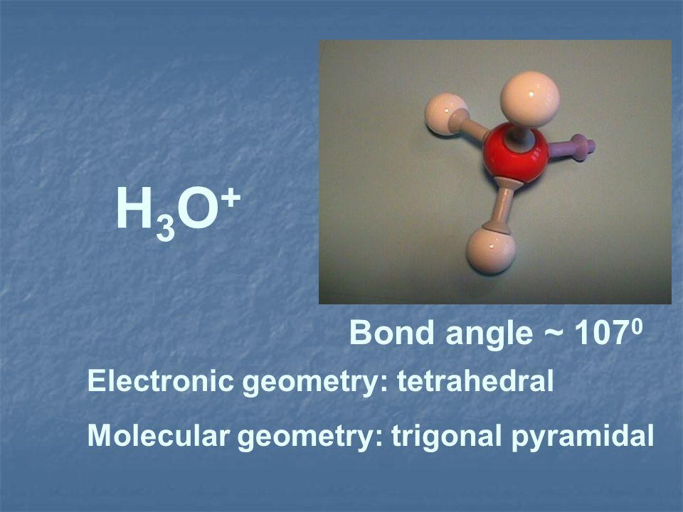 H3O+H3O+ Electronic geometry: tetrahedral Molecular geometry: trigonal pyramidal Bond angle ~ 107 0