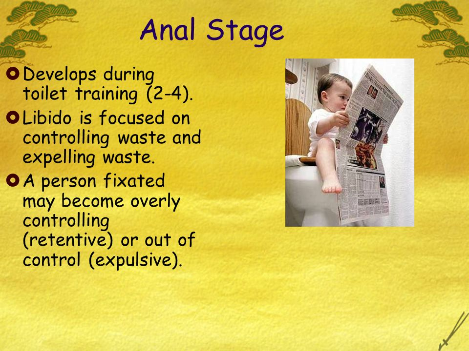 Anal Stage Develops during toilet training (2-4). Libido is focused on controlling waste and expelling waste. A person fixated may become overly contr