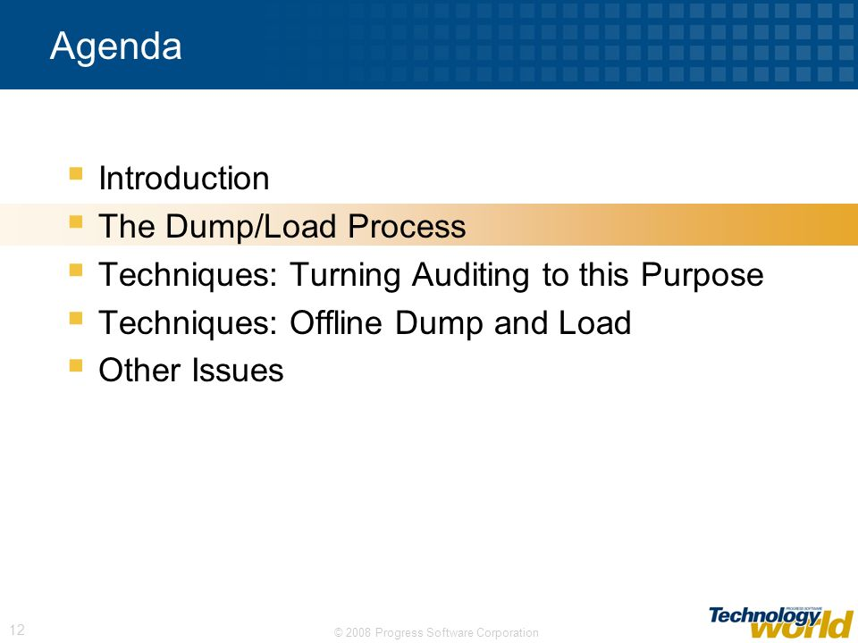 © 2008 Progress Software Corporation 12 Agenda Introduction The Dump/Load Process Techniques: Turning Auditing to this Purpose Techniques: Offline Dum