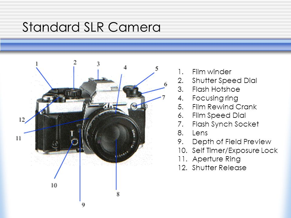 Standard SLR Camera 1.Film winder 2.Shutter Speed Dial 3.Flash Hotshoe 4.Focusing ring 5.Film Rewind Crank 6.Film Speed Dial 7.Flash Synch Socket 8.Lens 9.Depth of Field Preview 10.Self Timer/Exposure Lock 11.Aperture Ring 12.Shutter Release