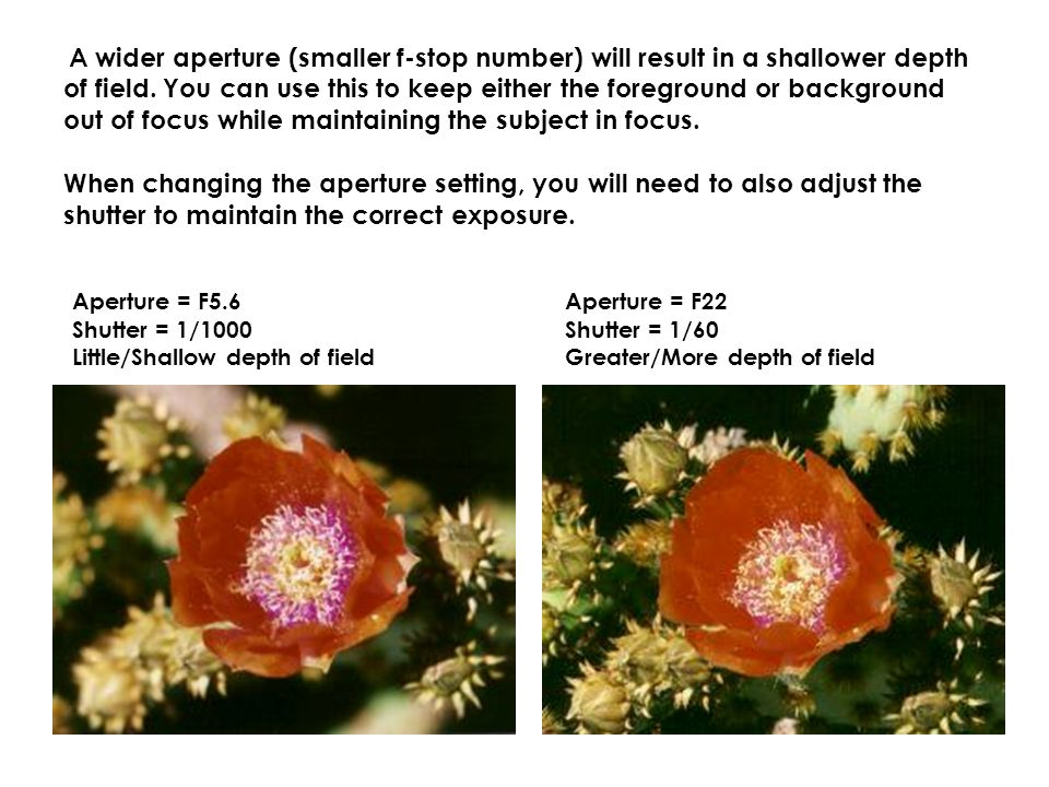 A wider aperture (smaller f-stop number) will result in a shallower depth of field.