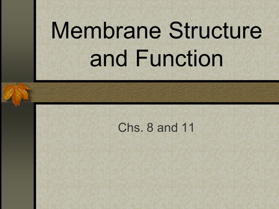 Membrane Structure and Function Chs. 8 and 11