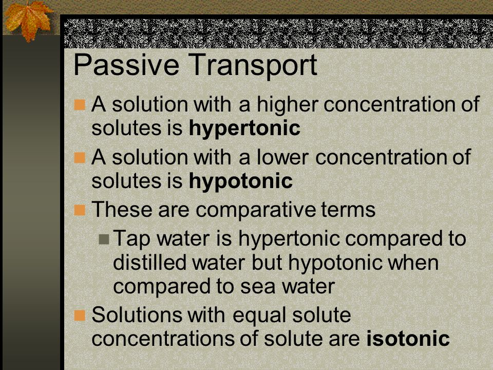 Passive Transport A solution with a higher concentration of solutes is hypertonic A solution with a lower concentration of solutes is hypotonic These