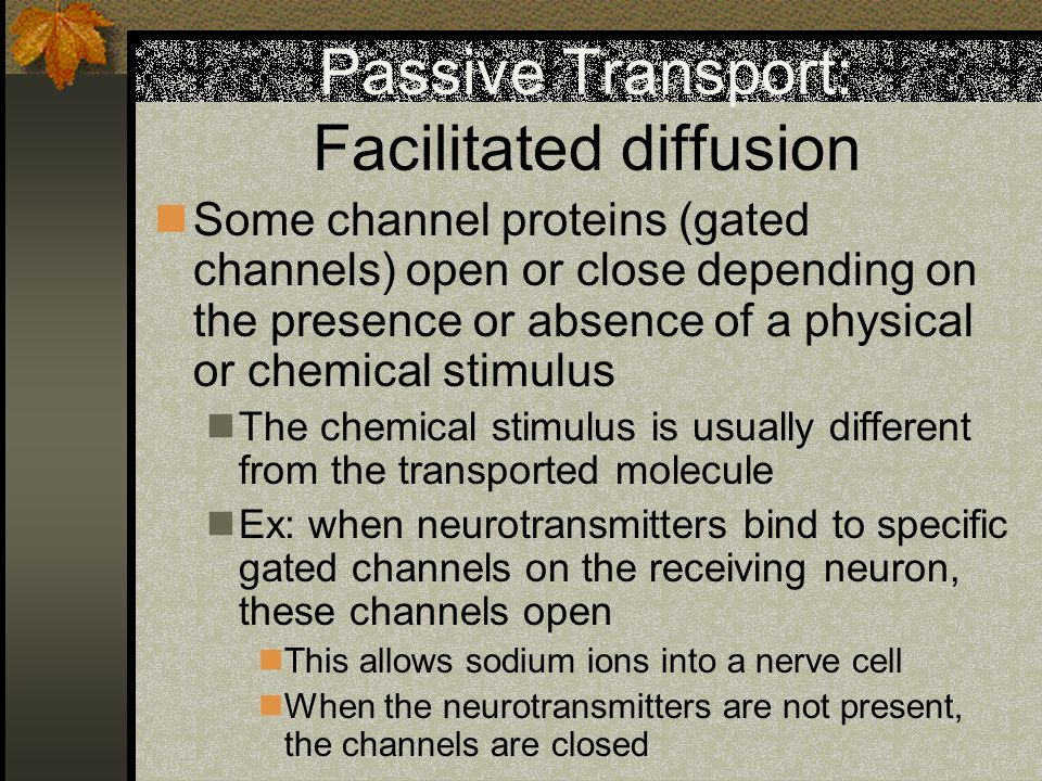 Passive Transport: Facilitated diffusion Some channel proteins (gated channels) open or close depending on the presence or absence of a physical or ch