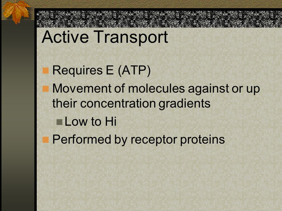Active Transport Requires E (ATP) Movement of molecules against or up their concentration gradients Low to Hi Performed by receptor proteins