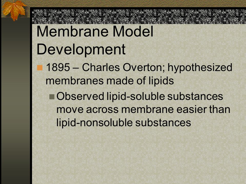 Membrane Model Development 1895 – Charles Overton; hypothesized membranes made of lipids Observed lipid-soluble substances move across membrane easier