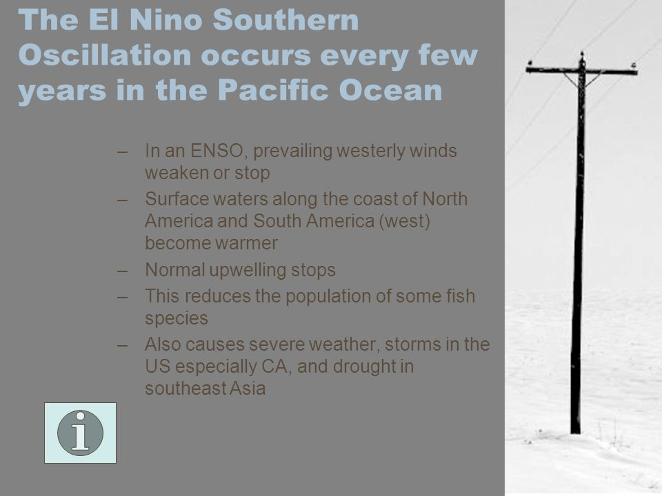 The El Nino Southern Oscillation occurs every few years in the Pacific Ocean –In an ENSO, prevailing westerly winds weaken or stop –Surface waters alo