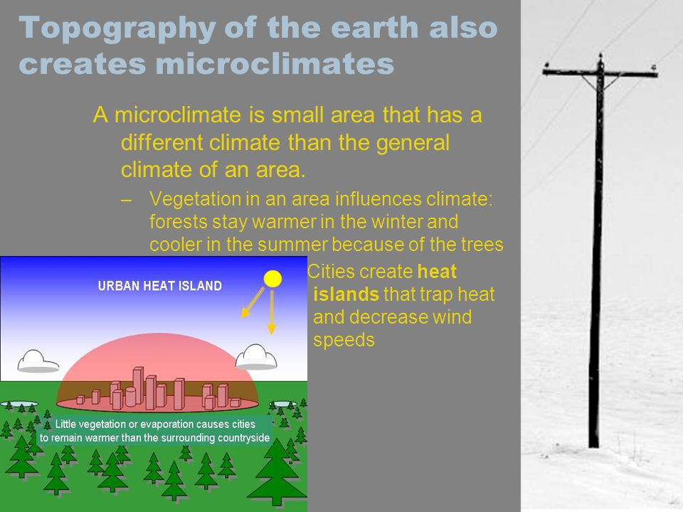 Topography of the earth also creates microclimates A microclimate is small area that has a different climate than the general climate of an area. –Veg