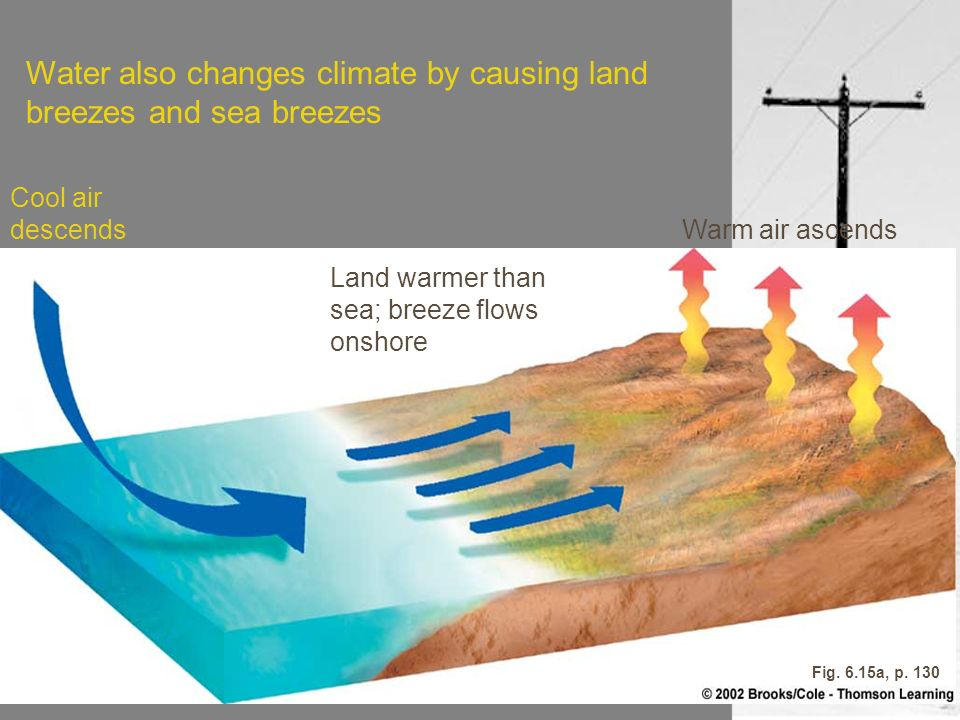 Cool air descends Land warmer than sea; breeze flows onshore Warm air ascends Fig. 6.15a, p. 130 Water also changes climate by causing land breezes an