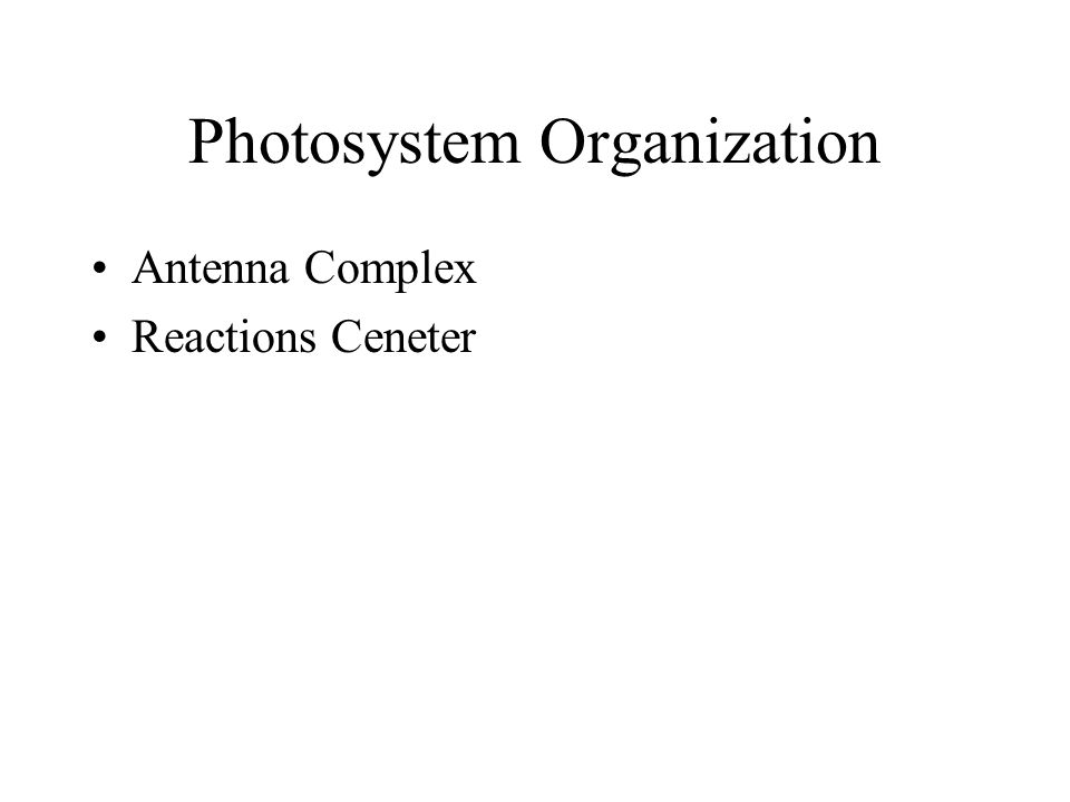 Photosystem Organization Antenna Complex Reactions Ceneter
