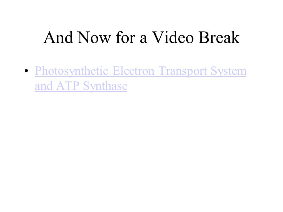 And Now for a Video Break Photosynthetic Electron Transport System and ATP SynthasePhotosynthetic Electron Transport System and ATP Synthase