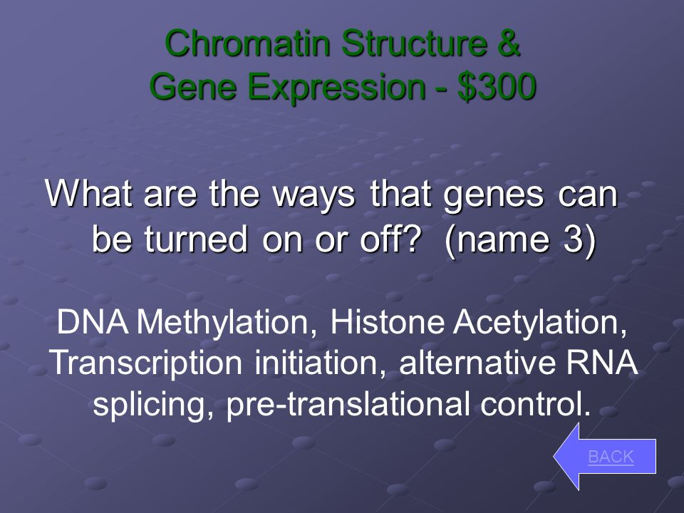 Chromatin Structure & Gene Expression - $200 How do heterochromatin and euchromatin differ.