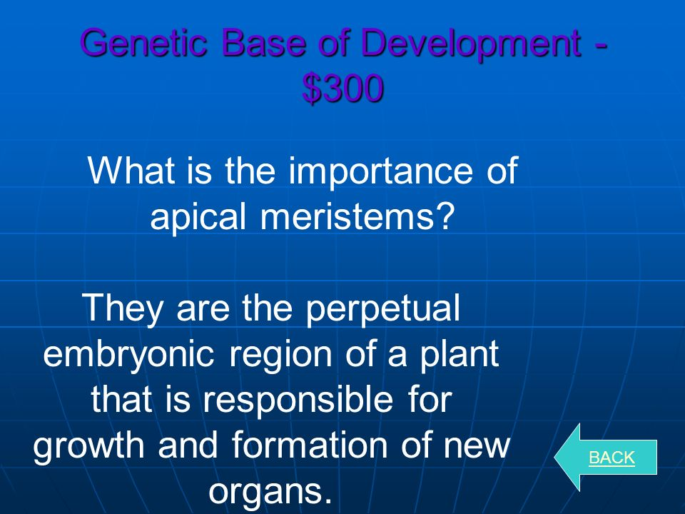 Genetic Base of Development - $200 BACK Morphogenesis Term from the physical process that gives rise to the shape of an organism.